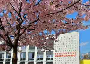 Regionální knihovna v Karviné-Mizerově.jpg