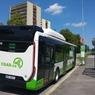 autobus_01.jpg