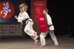 10_v rámci doprovodného programu předvedla své umění Škola Taekwon-Do ITF Karviná